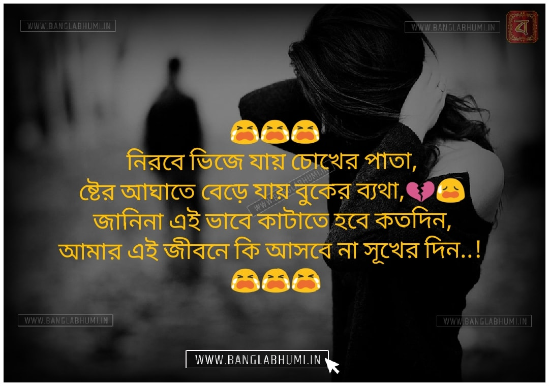 Facebook Bangla Sad Love Shayari share