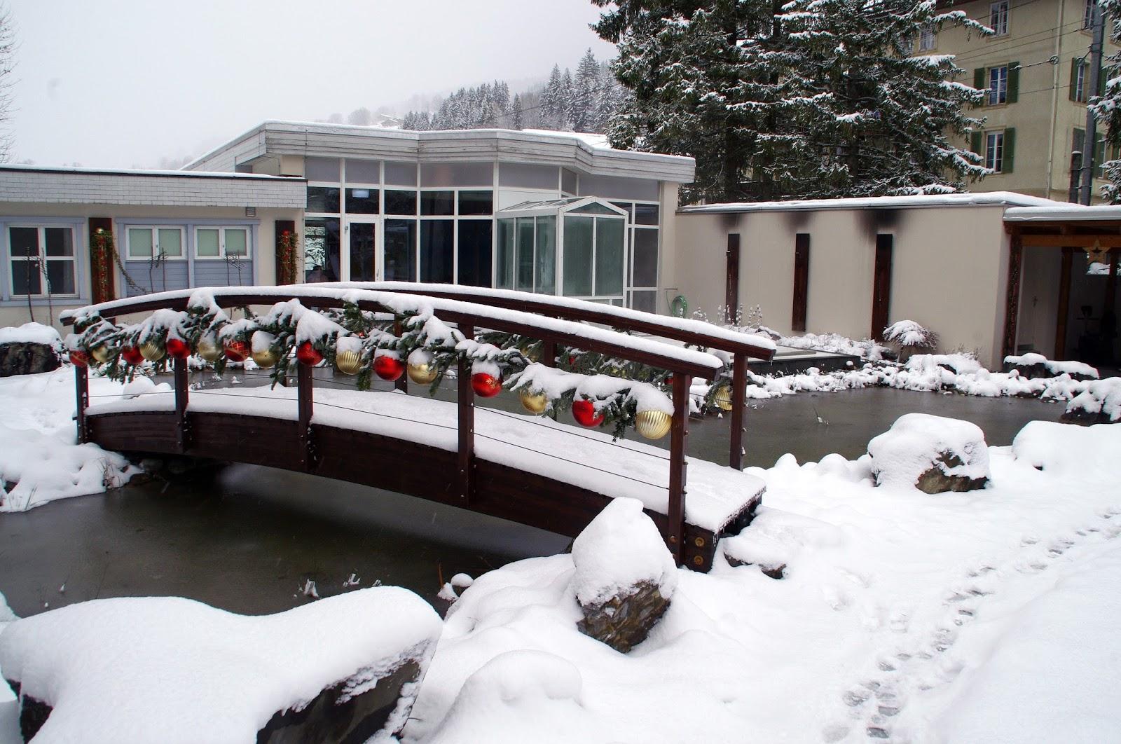 Hotel Belvedere Grindelwald Bridge and Pond