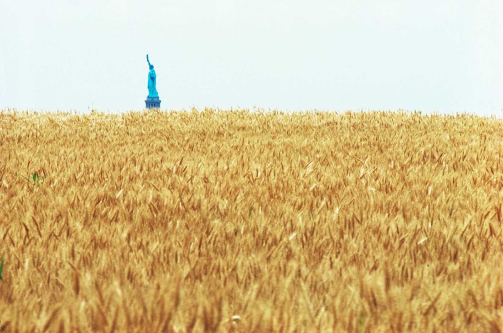 Con la Estatua de la Libertad a través del Hudson.