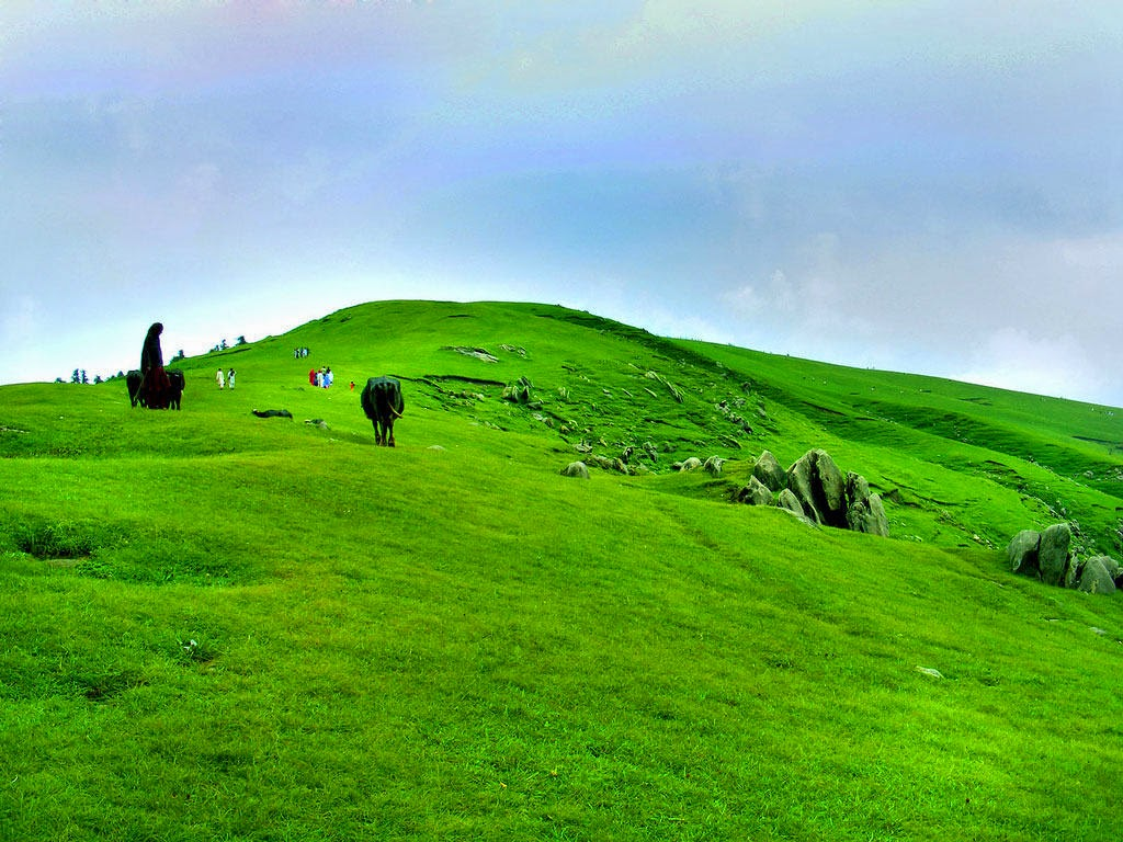 Toli Pir, Rawalakot 5 Best Places To Discover In Pakistan
