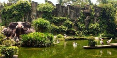 Kebun Binatang Ragunan kebun binatang ragunan jam kebun binatang ragunan buka jam kebun binatang ragunan berada di kota kebun binatang ragunan jakarta selatan