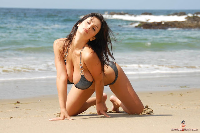 Denise-Milani-Beach-Silver-bikini-hottest-photoshoot-pics-24