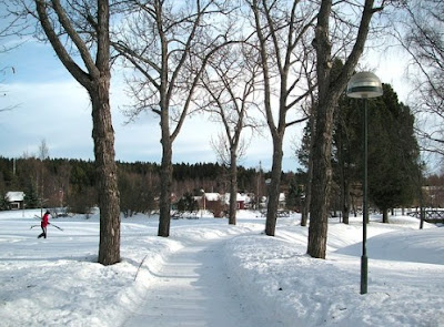 Musim Salju di Swedia