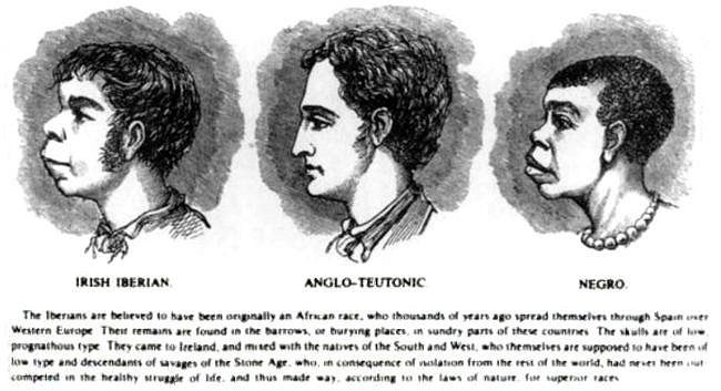 Slavery white slave trade advise