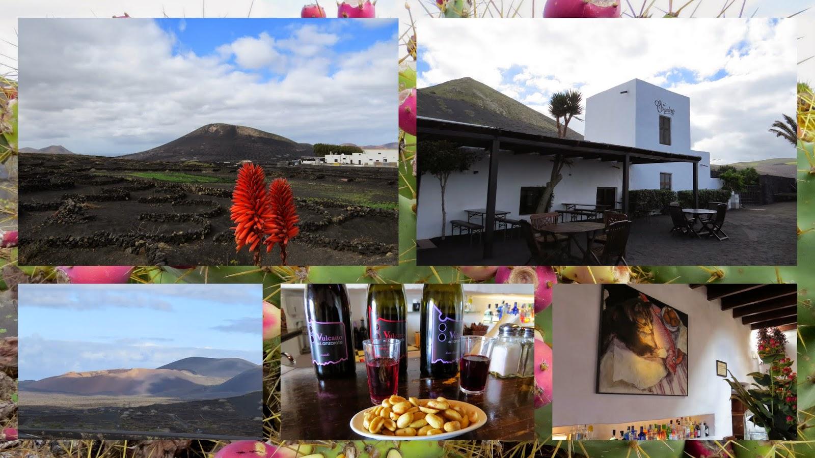 Wine Tasting at Lanzarote's El Chupadero