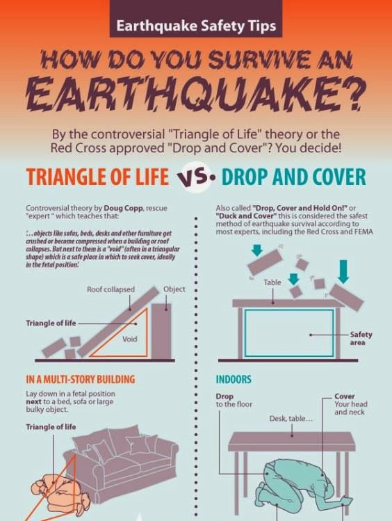 Stain On Paper Earthquake Survival Quot Triangle Of Life Quot Vs