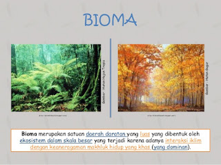 Organisasi Tingkat Kehidupan Bioma