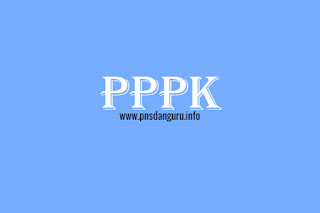 Mengenal PPPK Dan Proses Pengadaannya