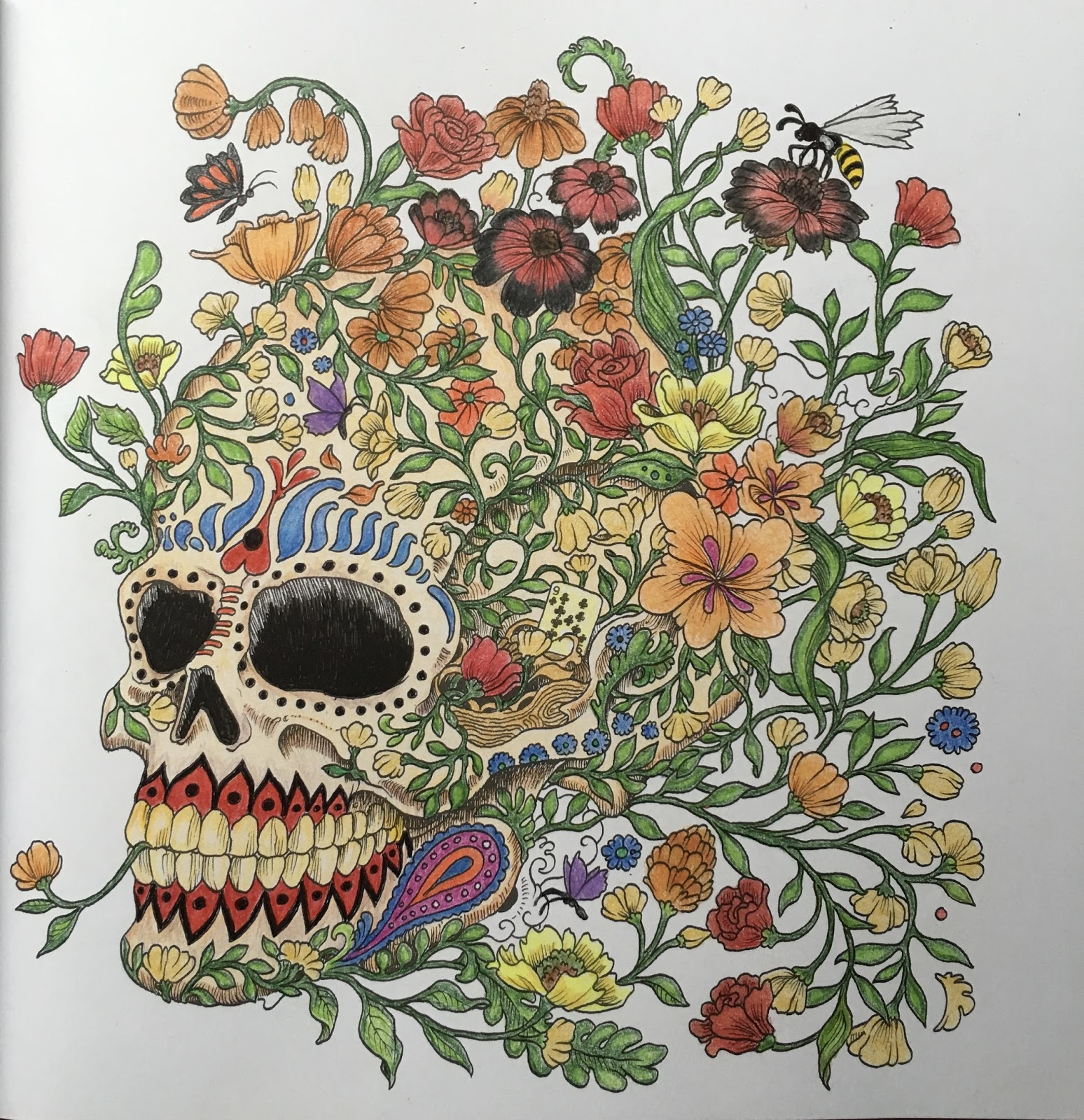 Colormystyle Review Imagimorphia Coloring Book