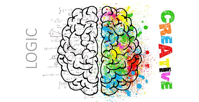 Cara Meningkatkan IQ