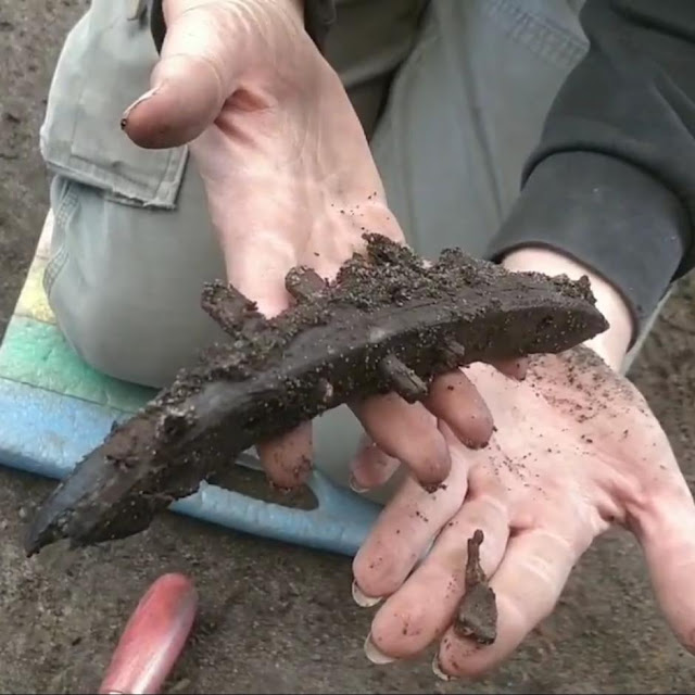 Thousands of objects discovered in Scandinavia's first Viking city