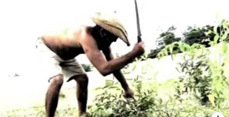 No Ceará, idoso constrói o próprio cemitério, e inauguração é feita após sua morte