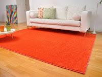 4 Tips Jitu Membersihkan Karpet