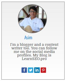 author widget blogger 3