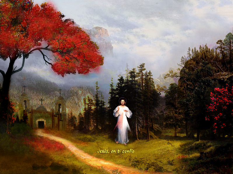 jesus misericordioso en bosque camino a iglesia