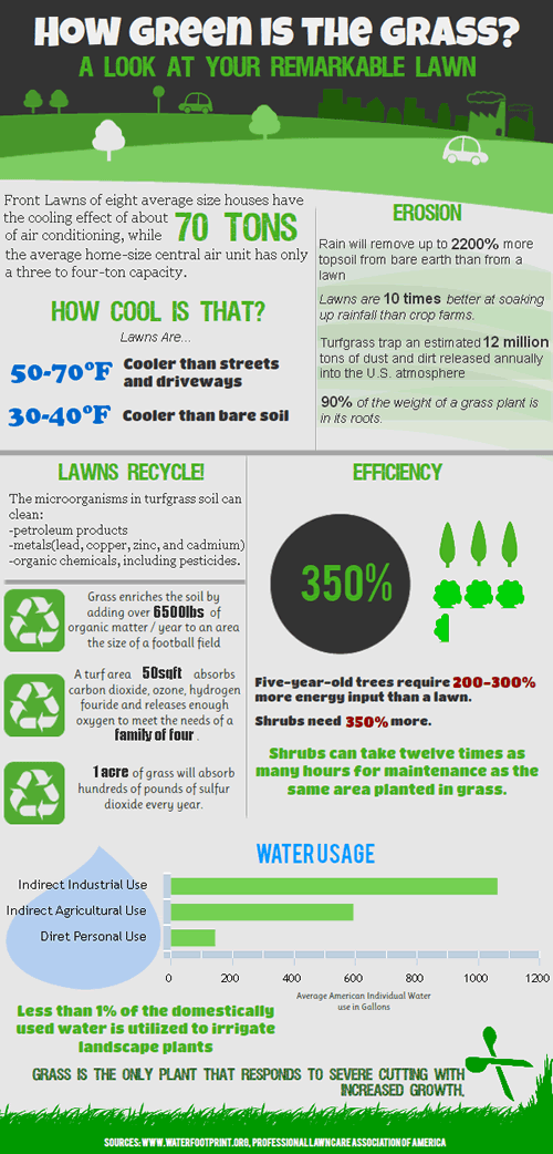 infografika Adama Kutnera jak zielona jest trawa
