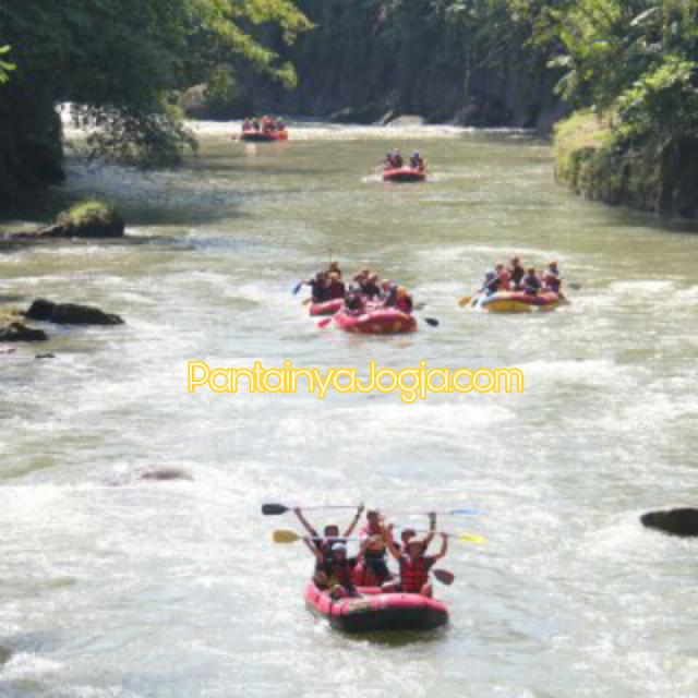 rufting sungai elo magelang