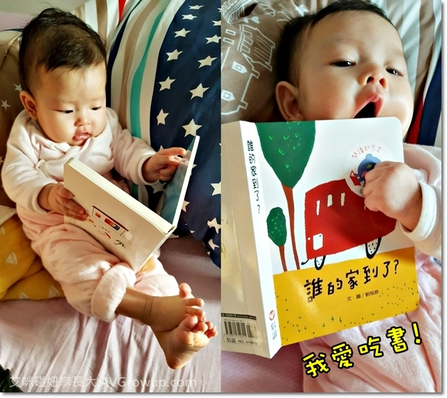 親子共讀-信誼出版-誰的家到了-硬頁書-圖卡-閃卡-布書-閱讀起步走