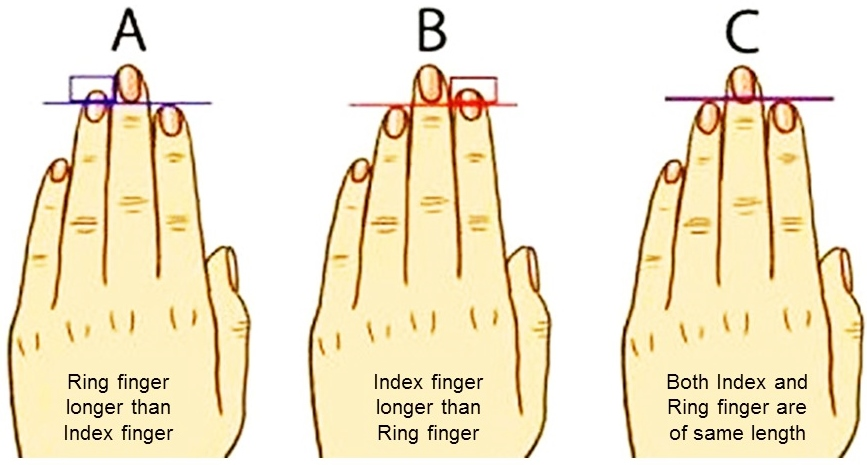 Fingers About Your Personality