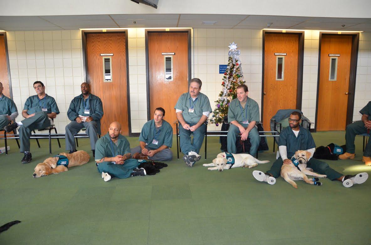 Top 10 Modern Prison Programs