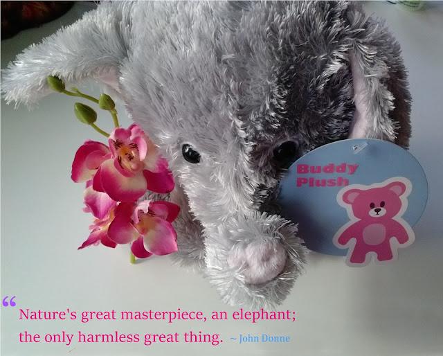 #BuddyPlush Bino Plush Darling Elephant