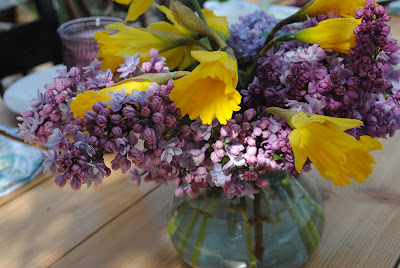 Lilacs and daffodils, flowers from the garden