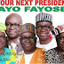 """Don't Waste Time On 2019 Presidency"", PDP Tells Fayose"