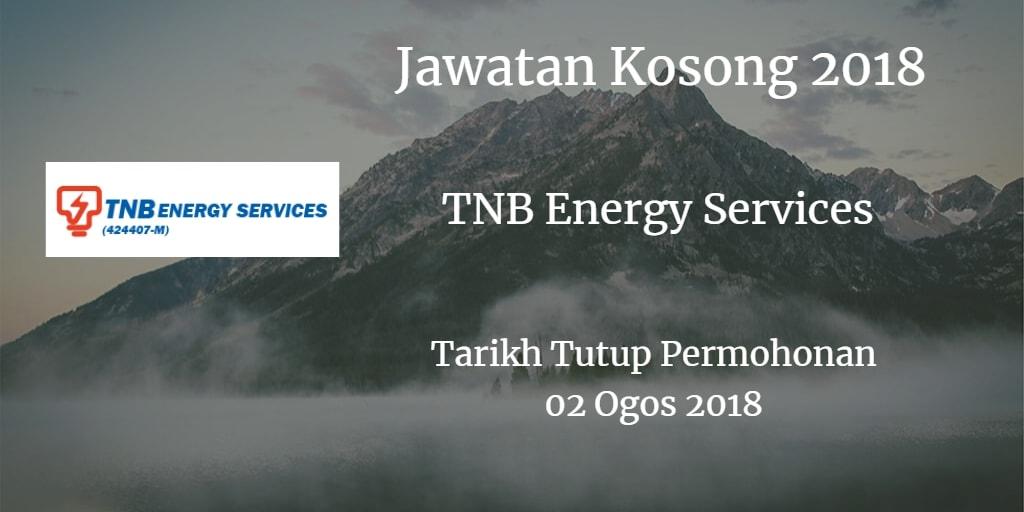 Jawatan Kosong TNBES 02 Ogos 2018