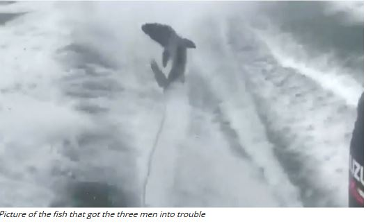 HILARIOUS: 3 men in trouble for abusing fish in U.S.