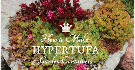 DIY Hypertufa Plant Containers