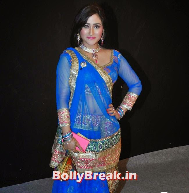 Neha Mehta, Star Parivaar Awards 2014 Red Carpet Pics