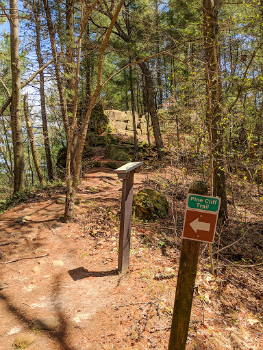 Pine Cliff Trail at Governor Dodge State Park