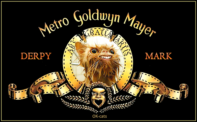 Photoshopped Cat picture •  A new Star is born: Metro Goldwyn Mayer cat, a derpy one, haha
