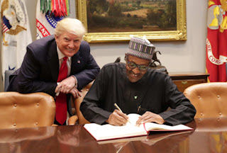 Buhari gathering with Trump yielded positive outcomes in Economy, Security, Anti-corruption