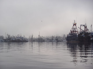 Stubbly masts in the mist