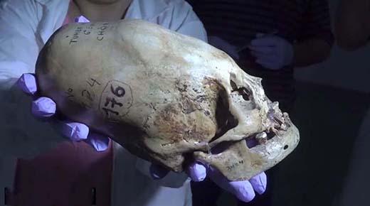 Resultados de ADN muestran que los cráneos alargados de Paracas no son nativos de América