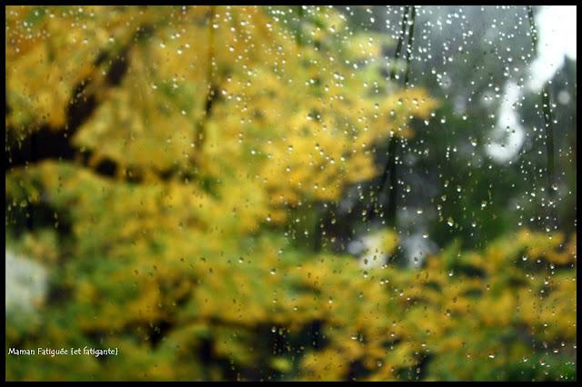 pluie automne vitre