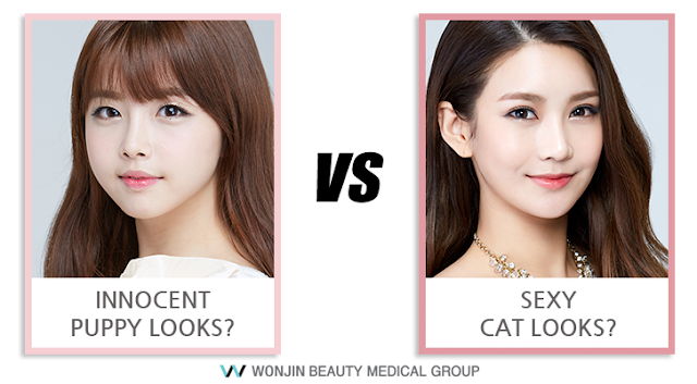 Puppy or Cat? Choose One With Wonjin Plastic Surgery's Secret Line Eyelid Surgery