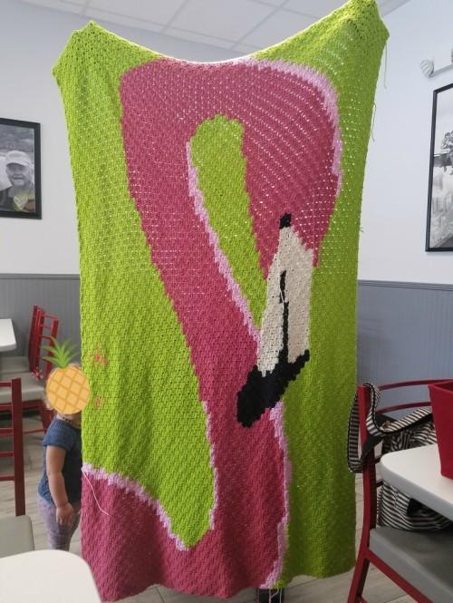 Free Flamingo Graphghan Crochet Pattern
