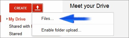 host web files in google drive