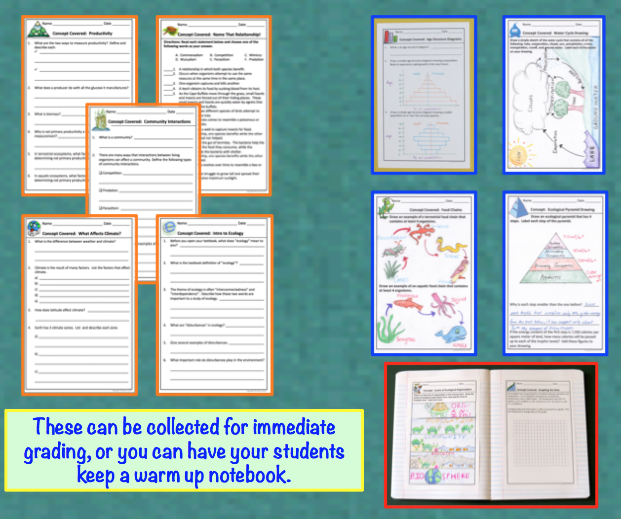 Amy Brown Science Ecology Warm Ups Bell Ringers Or Interactive Notebook Pages