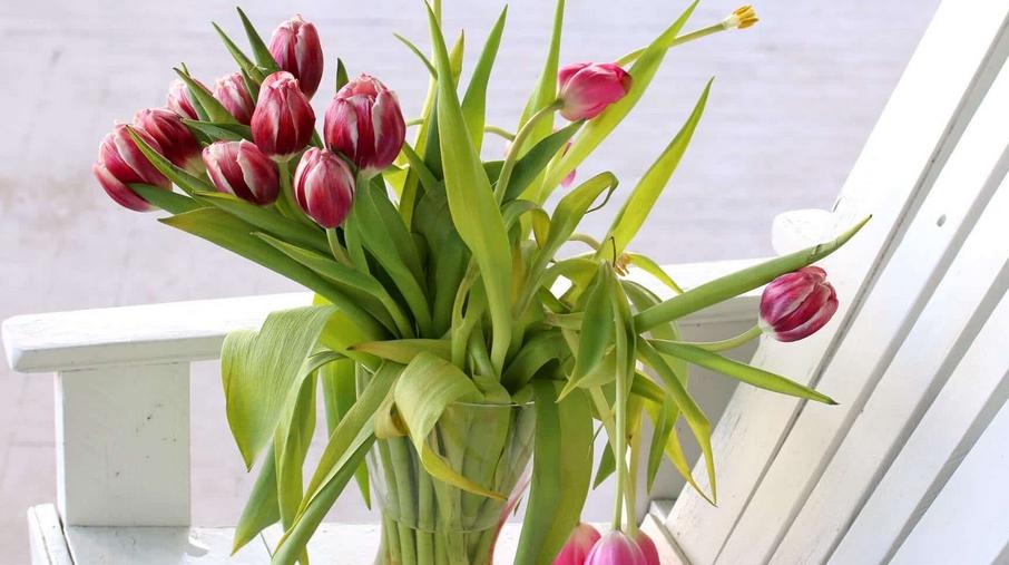 Pratęsti gėlių puokštės gyvenimą actas