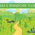 Colheita e Transporte Florestal