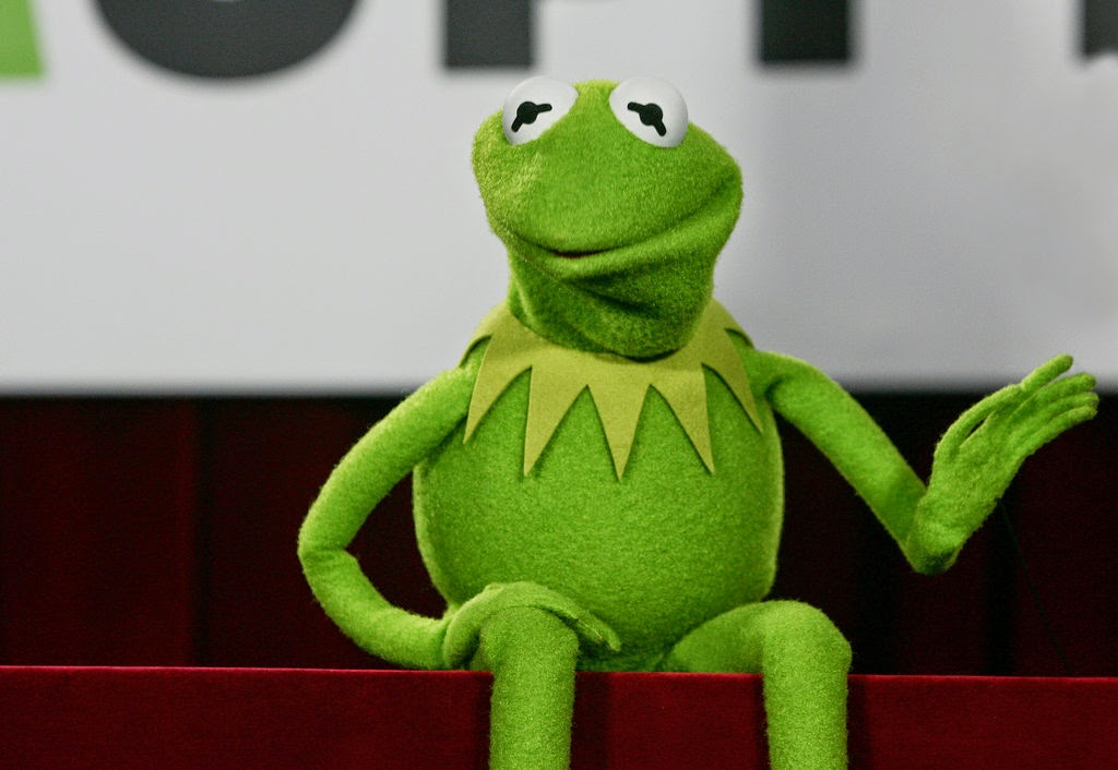 All My Disney: Kermit the Frog in real life