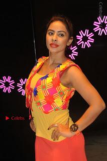 Telugu Actress Model Sri Reddy Latest Stills in Yellow Dress  0017.JPG