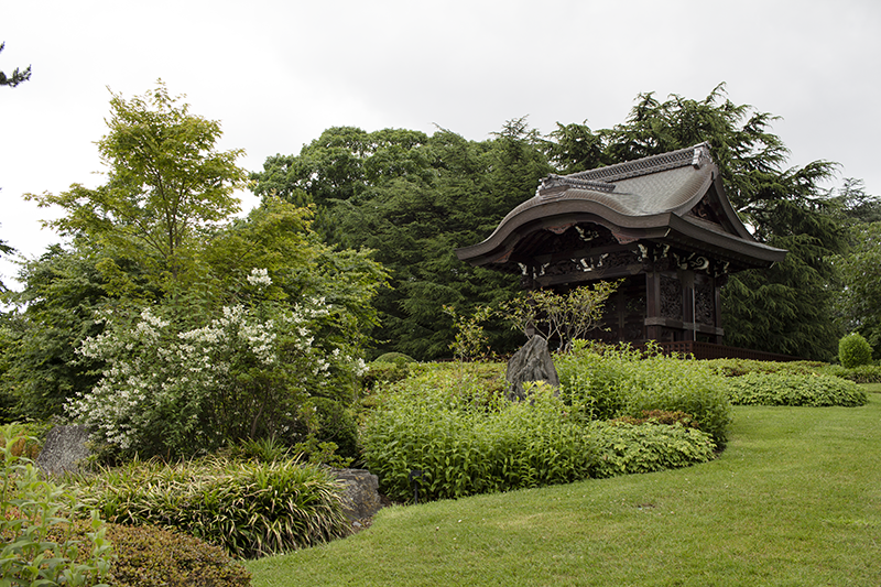 japanese garden, park, gardens, attractions, seasonal, Museums and galleries, viewpoint, flowers, grass,