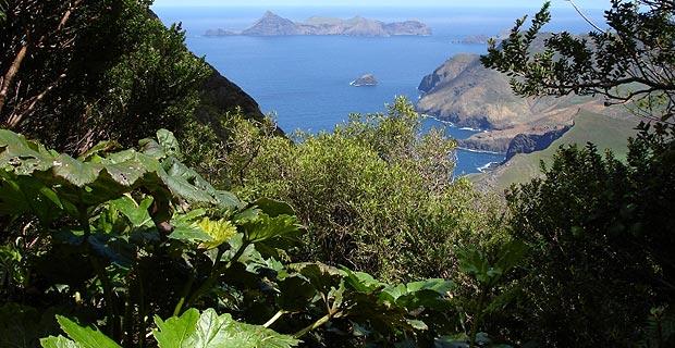 Robinson Crusoe, Juan Fernandez Archipelago, Chile.