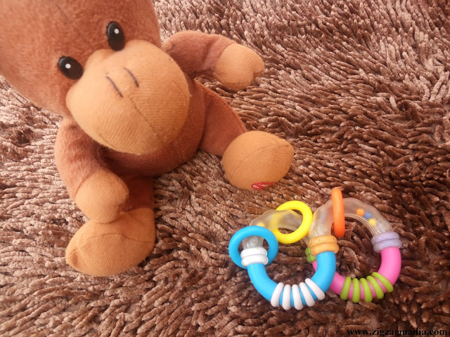 Baby Teether Review