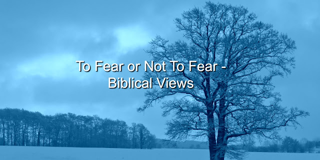 To Fear or Not to Fear - That is the Question and the Bible Has the Answer
