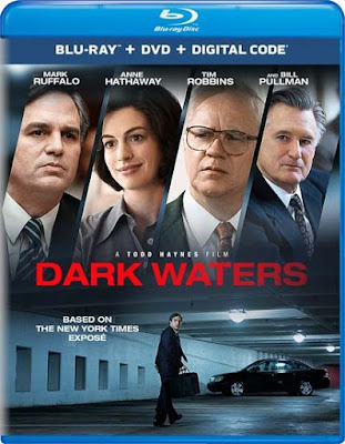 Dark Waters 2019 Eng BRRip 480p 400Mb ESub x264
